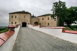 Замок Гродно