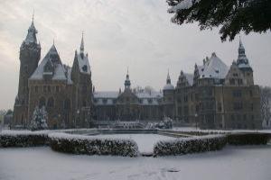Мошненский замок (польск. Pałac w Mosznej)